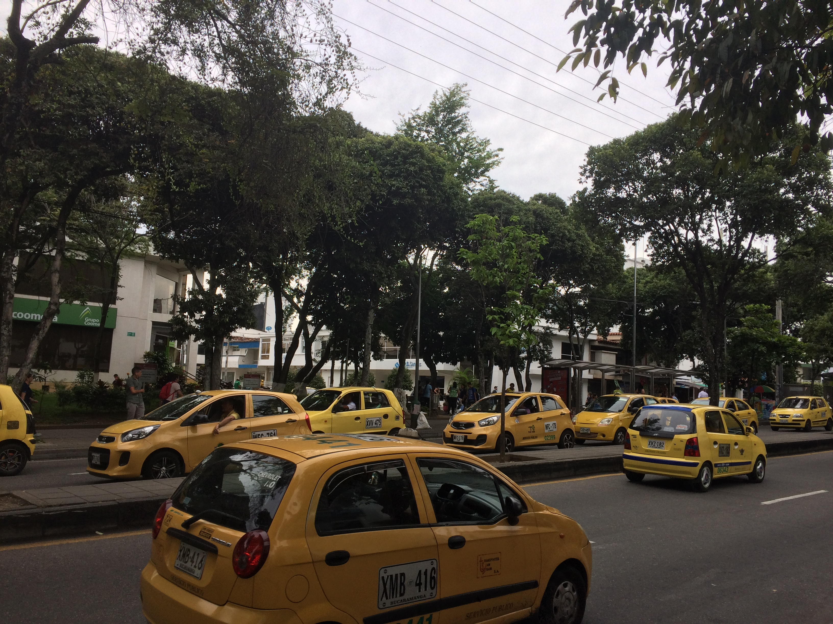すべての車とバイクが禁止され、街全体がタクシーで黄色に染まった日。環境に良い取り組み