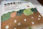 El campo amarillo de ARROZ en Japón, un símbolo del otoño 【español】