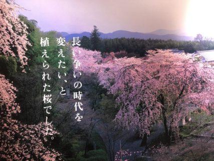 日本の宗教勧誘はなぜ、他宗教を批判して正当性をアピールするのか? 「better than」より「the best」がいい