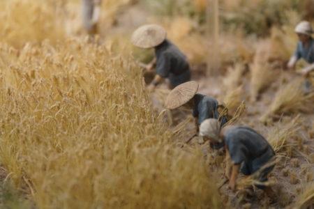 有機農業と聞くと「江戸時代に戻るんか!?」と揶揄してしまうひとたちの声に、寛大な心で耳を傾けよう