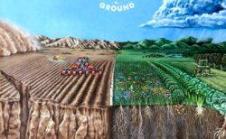映画「kiss the ground (2020)」:農業が地球を救う 【とてもおすすめ】